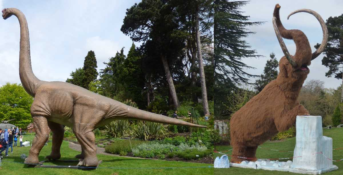 Jurassic Kingdom 2017 and Ice Age: The Lost Kingdom 2019 at the Birmingham Botanical Gardens